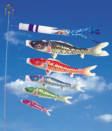 鯉のぼり天華錦鯉
